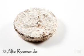 Antikes Gewicht aus Judaea