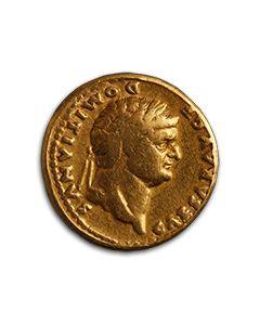 Domitian Aureus - Cornucopia